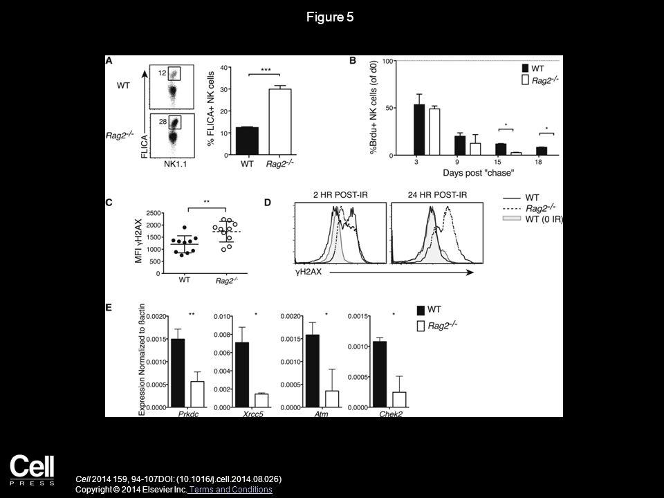 Figure 5 Cell 2014 159, 94-107DOI: (10.1016/j.cell.2014.08.026) Copyright © 2014 Elsevier Inc.