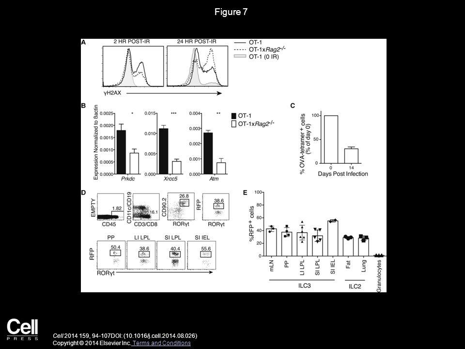 Figure 7 Cell 2014 159, 94-107DOI: (10.1016/j.cell.2014.08.026) Copyright © 2014 Elsevier Inc.