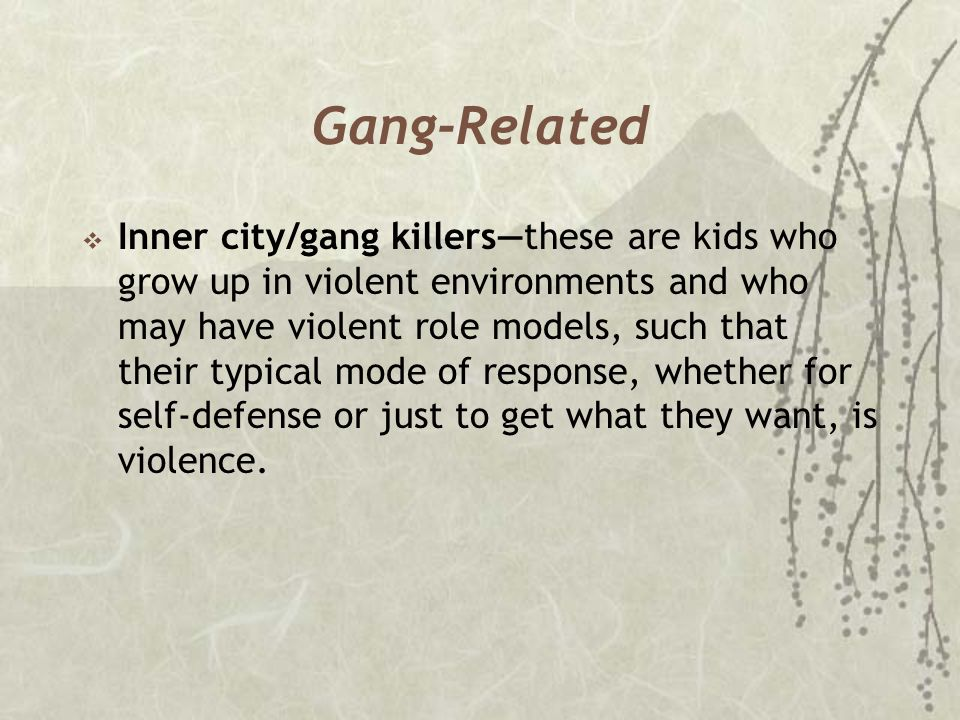 Gang-Related  Inner city/gang killers—these are kids who grow up in violent environments and who may have violent role models, such that their typica