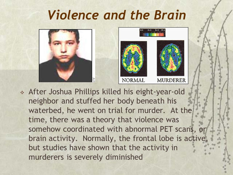 Violence and the Brain  After Joshua Phillips killed his eight-year-old neighbor and stuffed her body beneath his waterbed, he went on trial for murd