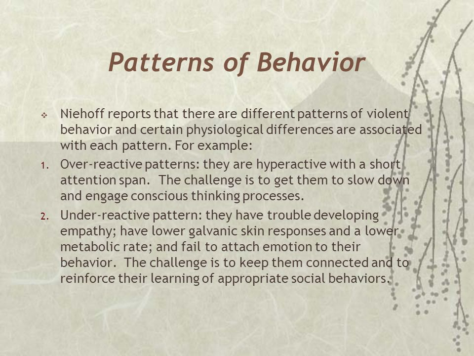 Patterns of Behavior  Niehoff reports that there are different patterns of violent behavior and certain physiological differences are associated with