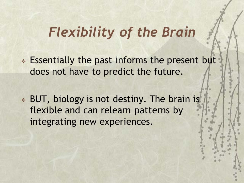 Flexibility of the Brain  Essentially the past informs the present but does not have to predict the future.  BUT, biology is not destiny. The brain