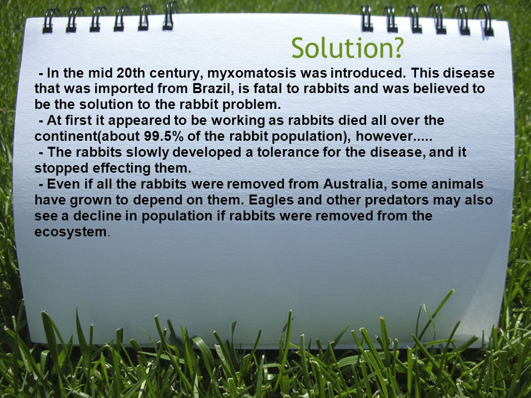 Solution. - In the mid 20th century, myxomatosis was introduced.