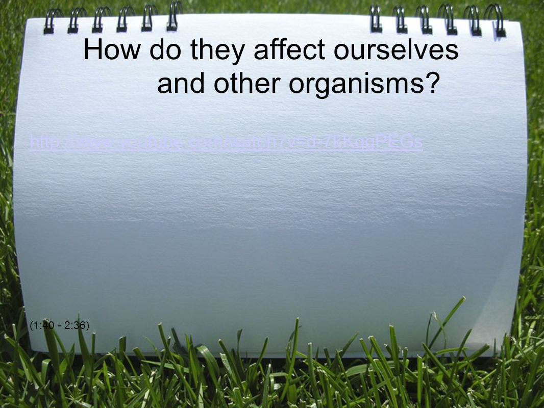 How do they affect ourselves and other organisms.