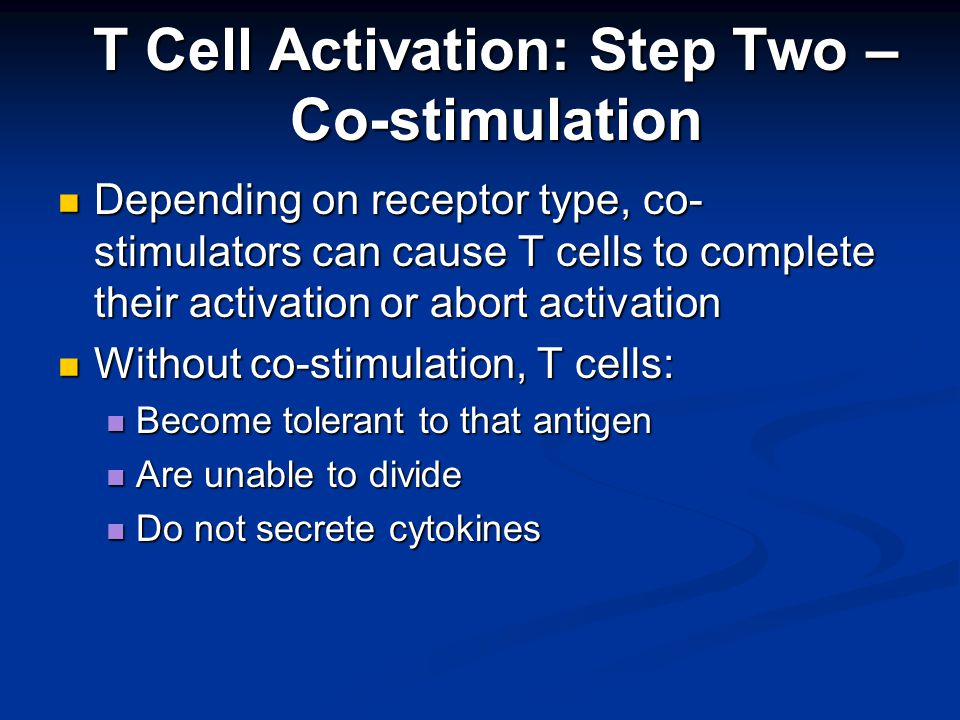 Depending on receptor type, co- stimulators can cause T cells to complete their activation or abort activation Depending on receptor type, co- stimulators can cause T cells to complete their activation or abort activation Without co-stimulation, T cells: Without co-stimulation, T cells: Become tolerant to that antigen Become tolerant to that antigen Are unable to divide Are unable to divide Do not secrete cytokines Do not secrete cytokines T Cell Activation: Step Two – Co-stimulation