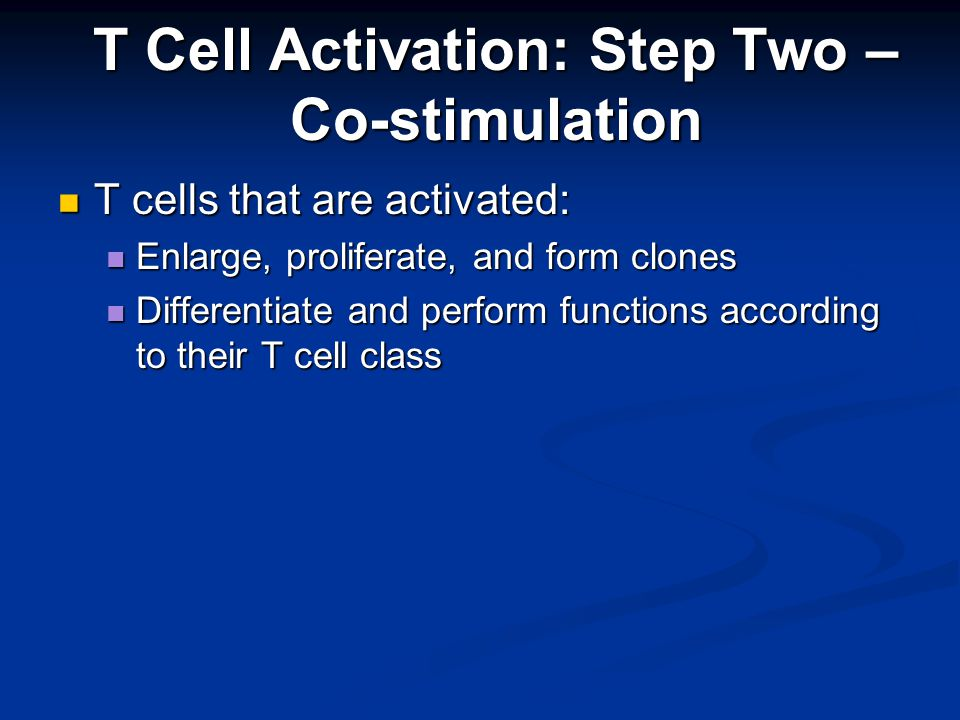 T cells that are activated: T cells that are activated: Enlarge, proliferate, and form clones Enlarge, proliferate, and form clones Differentiate and perform functions according to their T cell class Differentiate and perform functions according to their T cell class T Cell Activation: Step Two – Co-stimulation