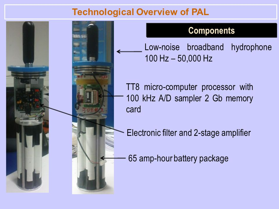 Technological Overview of PAL Components Low-noise broadband hydrophone 100 Hz – 50,000 Hz TT8 micro-computer processor with 100 kHz A/D sampler 2 Gb memory card 65 amp-hour battery package Electronic filter and 2-stage amplifier