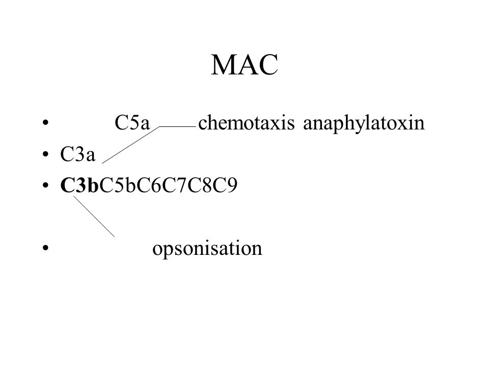MAC C5a chemotaxis anaphylatoxin C3a C3bC5bC6C7C8C9 opsonisation