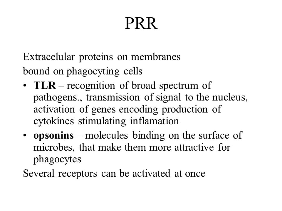PRR Extracelular proteins on membranes bound on phagocyting cells TLR – recognition of broad spectrum of pathogens., transmission of signal to the nuc