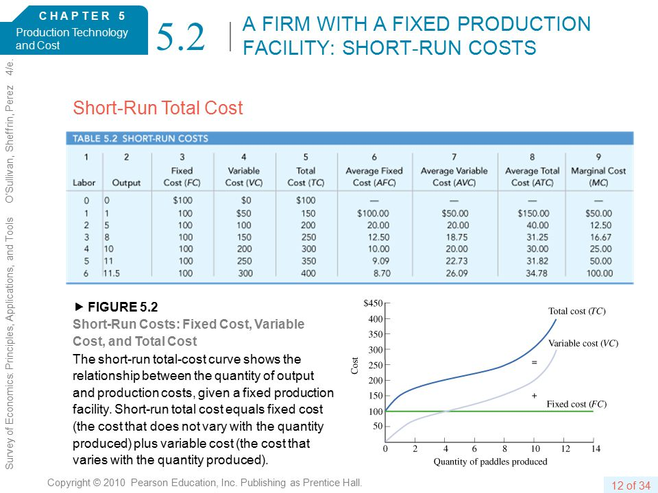 C H A P T E R 5 Production Technology and Cost 12 of 34 Copyright © 2010 Pearson Education, Inc.