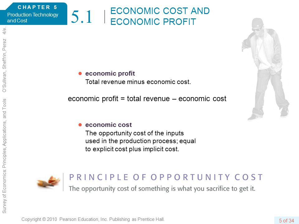 C H A P T E R 5 Production Technology and Cost 5 of 34 Copyright © 2010 Pearson Education, Inc.