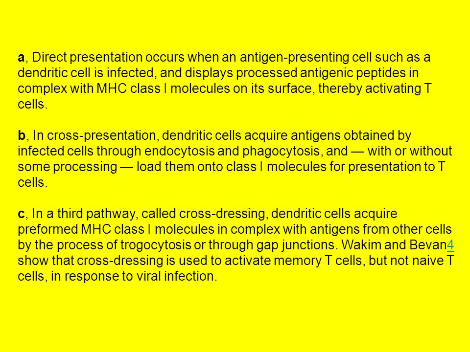 a, Direct presentation occurs when an antigen-presenting cell such as a dendritic cell is infected, and displays processed antigenic peptides in complex with MHC class I molecules on its surface, thereby activating T cells.
