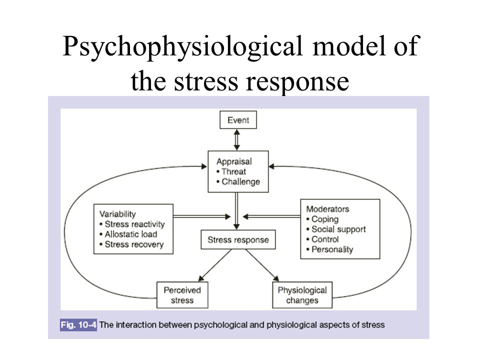 Stress and Illness – Key point If you repeatedly turn on the stress-response, or if you cannot appropriately turn off the stress-response at the end of a stressful event, the stress-response can eventually become as damaging as some stressors themselves.