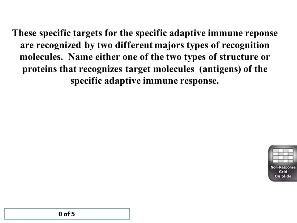 These specific targets for the specific adaptive immune reponse are recognized by two different majors types of recognition molecules. Name either one