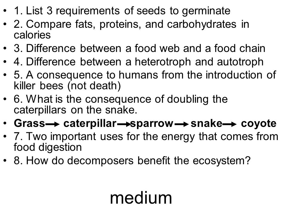 medium 1. List 3 requirements of seeds to germinate 2.