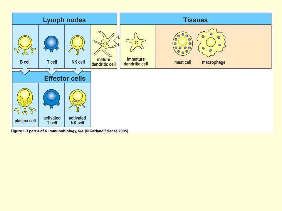 Figure 1-3 part 4 of 4
