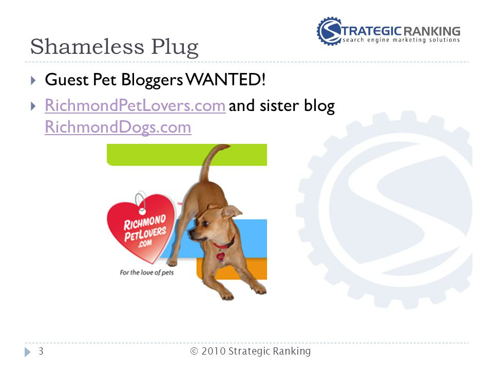 Shameless Plug  Guest Pet Bloggers WANTED.