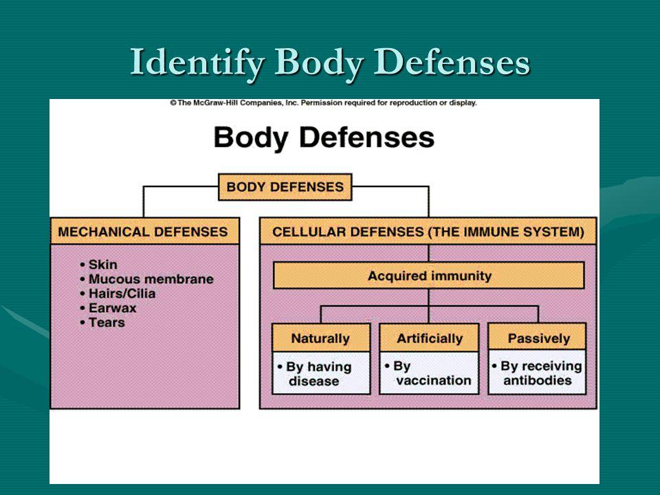 Identify Body Defenses