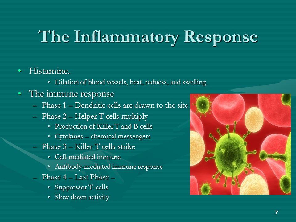 7 The Inflammatory Response Histamine.Histamine.