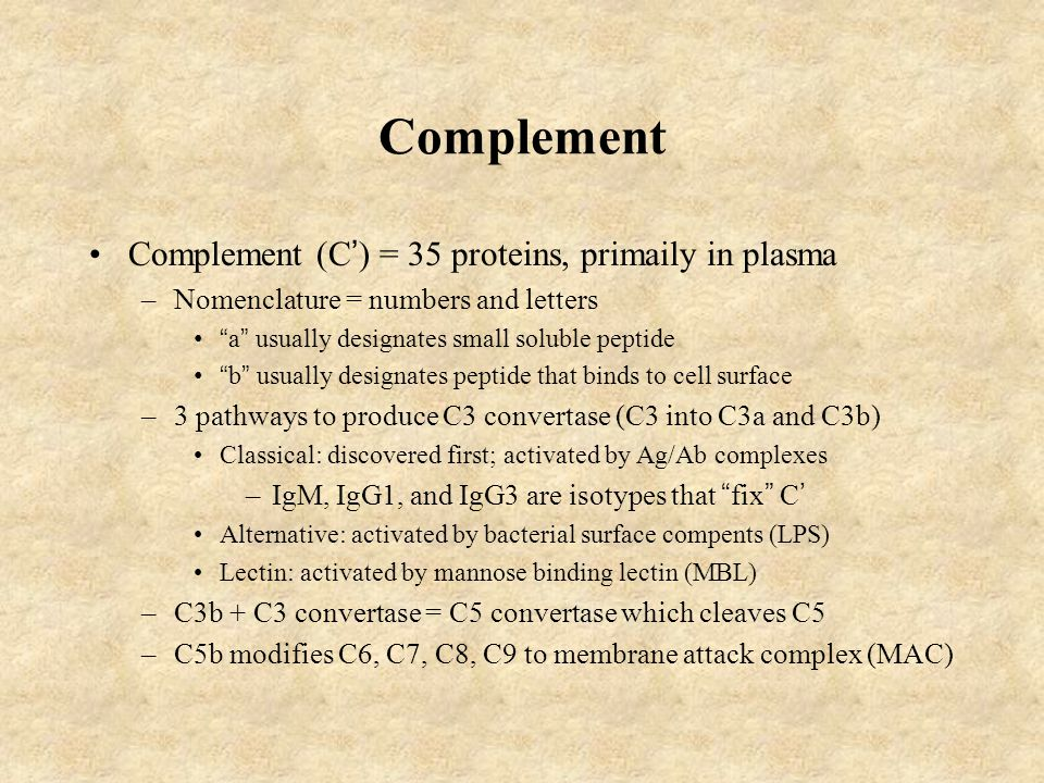 "Complement Complement (C ' ) = 35 proteins, primaily in plasma –Nomenclature = numbers and letters "" a "" usually designates small soluble peptide "" b"