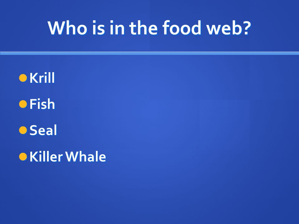 Who is in the food web? Krill Krill Fish Fish Seal Seal Killer Whale Killer Whale