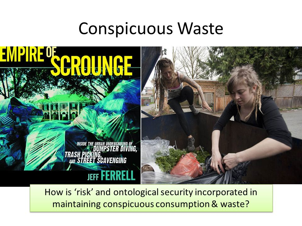 Conspicuous Waste How is 'risk' and ontological security incorporated in maintaining conspicuous consumption & waste