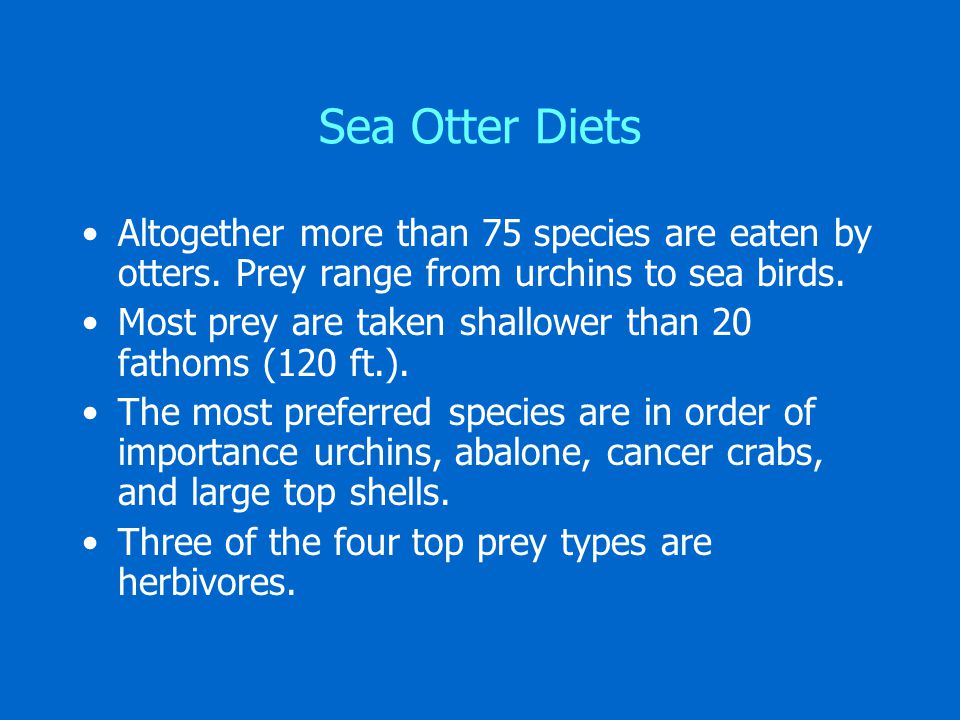 Sea Otter Diets Altogether more than 75 species are eaten by otters.