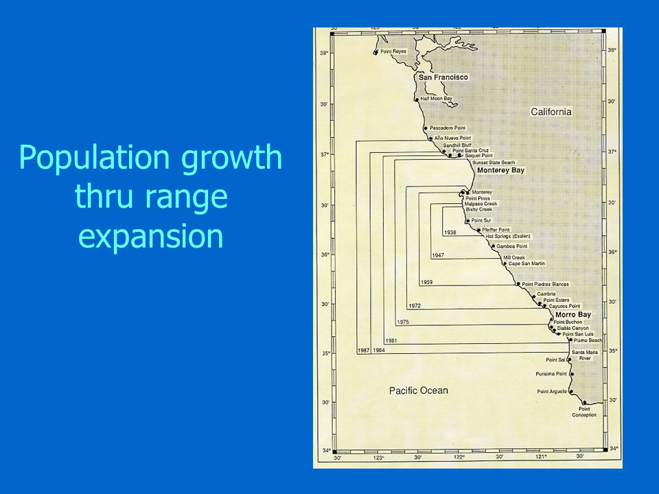 Population growth thru range expansion