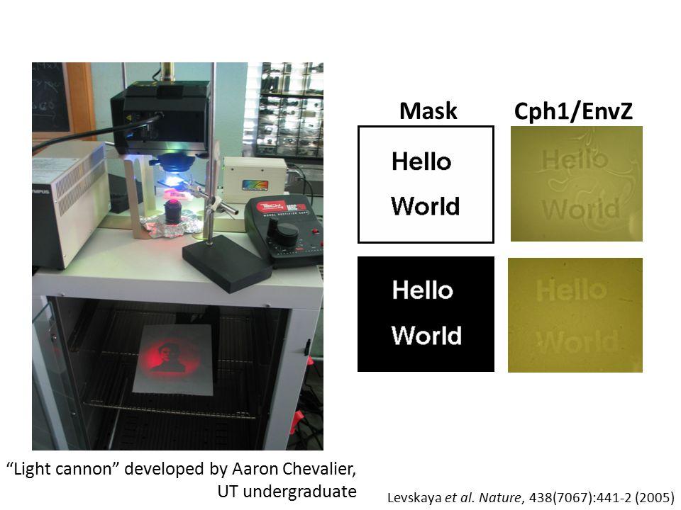 Cph1/EnvZ Mask Light cannon developed by Aaron Chevalier, UT undergraduate Levskaya et al.