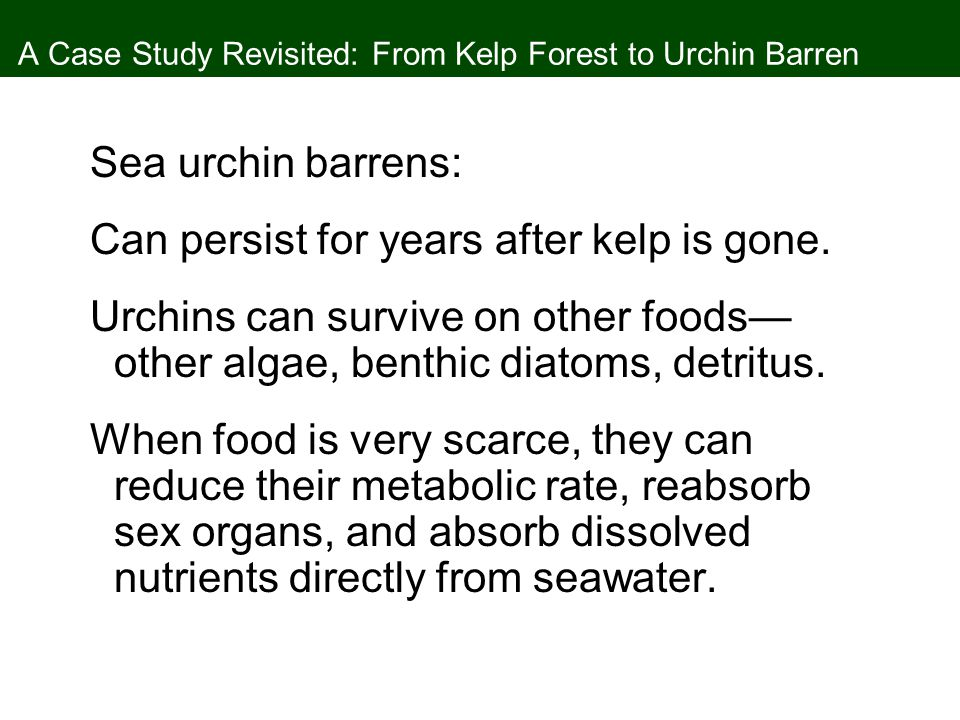 A Case Study Revisited: From Kelp Forest to Urchin Barren Sea urchin barrens: Can persist for years after kelp is gone.