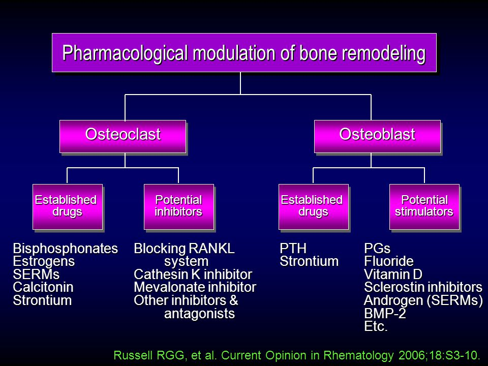 OsteoclastOsteoblast Russell RGG, et al. Current Opinion in Rhematology 2006;18:S3-10.