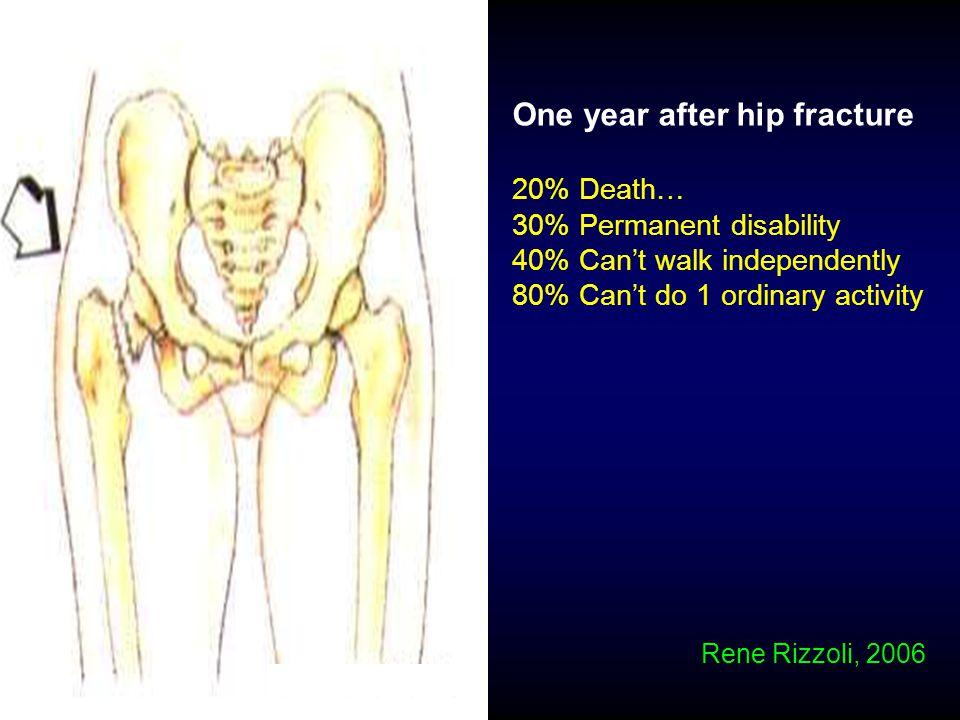 Osteoclast lineageOsteoblast lineage Rene Rizzoli, 2006