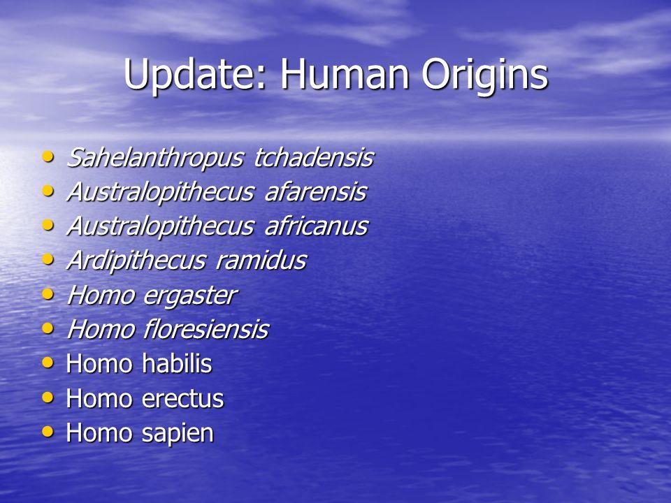 Update: Human Origins Sahelanthropus tchadensis Sahelanthropus tchadensis Australopithecus afarensis Australopithecus afarensis Australopithecus afric