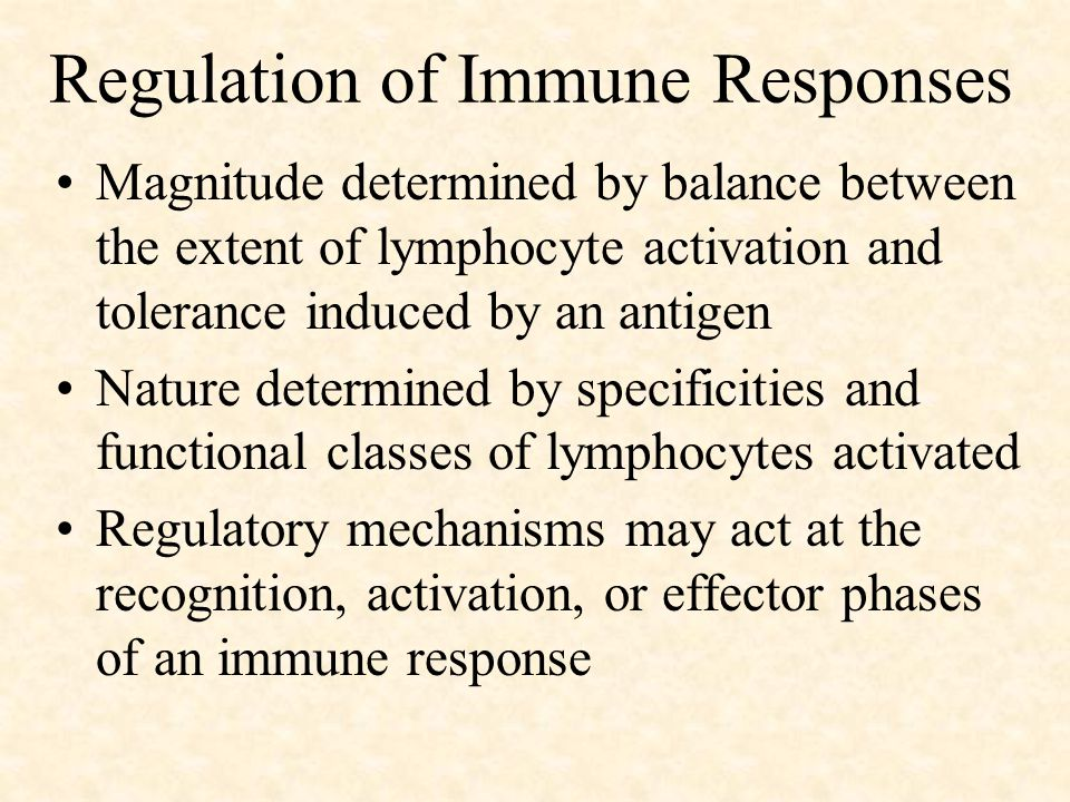 Regulation of Immune Responses Magnitude determined by balance between the extent of lymphocyte activation and tolerance induced by an antigen Nature determined by specificities and functional classes of lymphocytes activated Regulatory mechanisms may act at the recognition, activation, or effector phases of an immune response