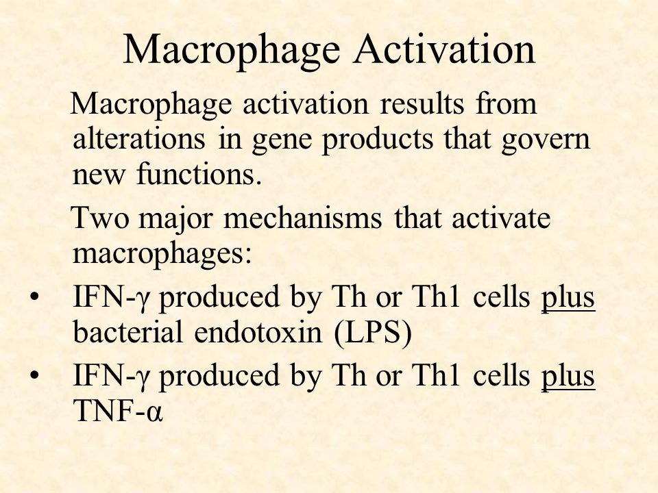 Macrophage Activation Macrophage activation results from alterations in gene products that govern new functions.