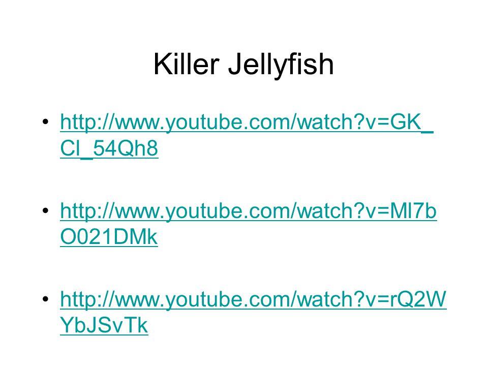 Killer Jellyfish http://www.youtube.com/watch?v=GK_ Cl_54Qh8http://www.youtube.com/watch?v=GK_ Cl_54Qh8 http://www.youtube.com/watch?v=Ml7b O021DMkhttp://www.youtube.com/watch?v=Ml7b O021DMk http://www.youtube.com/watch?v=rQ2W YbJSvTkhttp://www.youtube.com/watch?v=rQ2W YbJSvTk