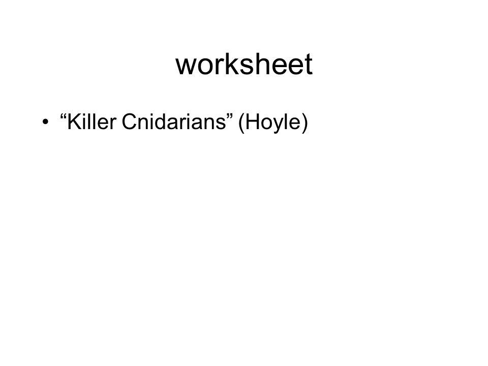 worksheet Killer Cnidarians (Hoyle)