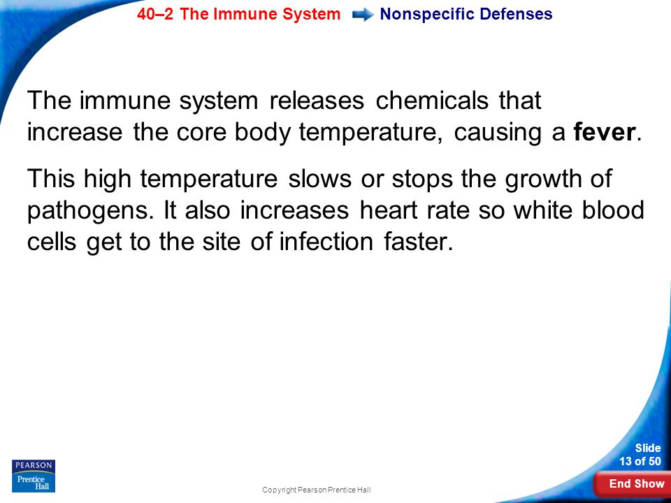 End Show 40–2 The Immune System Slide 13 of 50 Copyright Pearson Prentice Hall Nonspecific Defenses The immune system releases chemicals that increase