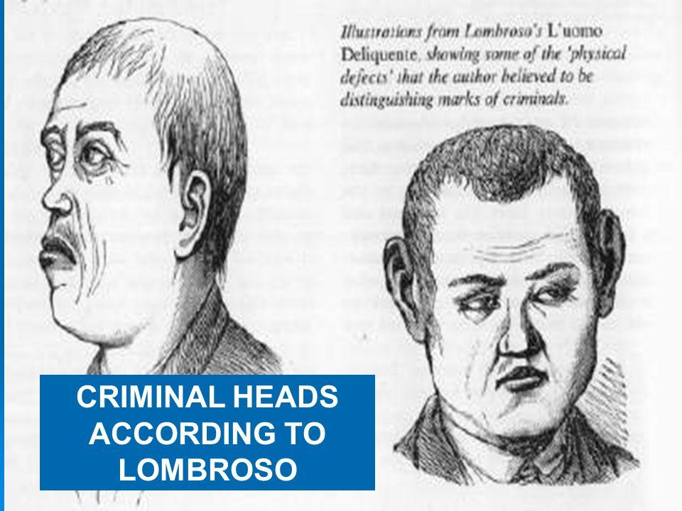CRIMINAL BODY TYPE???
