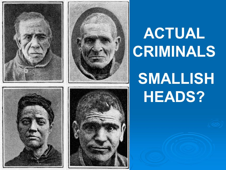  Another Old School NATURE Theory:  William Sheldon Body types determined criminality.