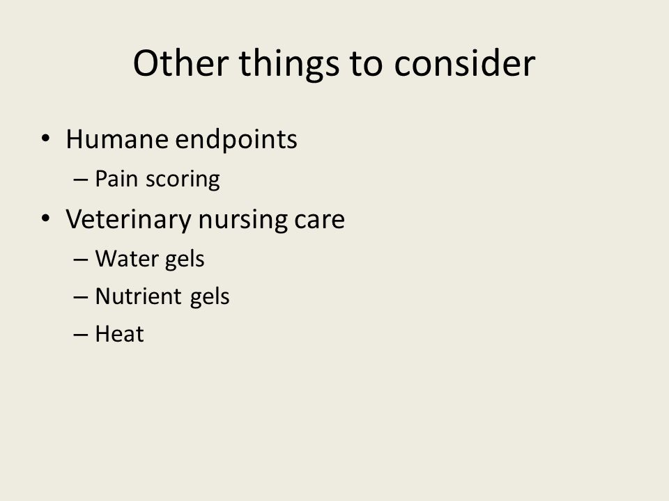 Other things to consider Humane endpoints – Pain scoring Veterinary nursing care – Water gels – Nutrient gels – Heat