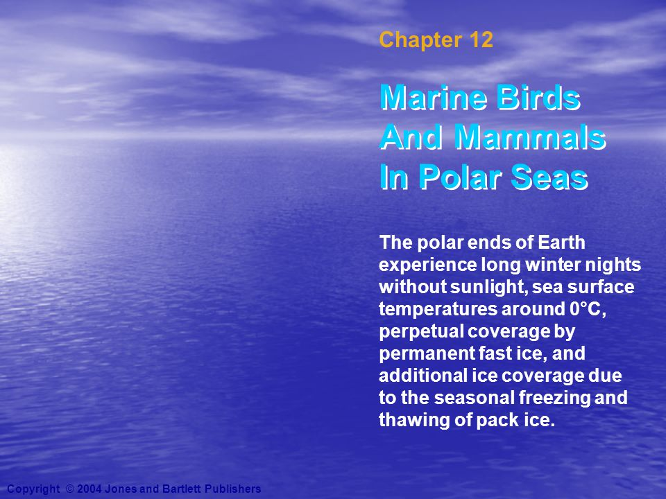 Chapter 12 Marine Birds And Mammals In Polar Seas Copyright © 2004 Jones and Bartlett Publishers The polar ends of Earth experience long winter nights without sunlight, sea surface temperatures around 0°C, perpetual coverage by permanent fast ice, and additional ice coverage due to the seasonal freezing and thawing of pack ice.