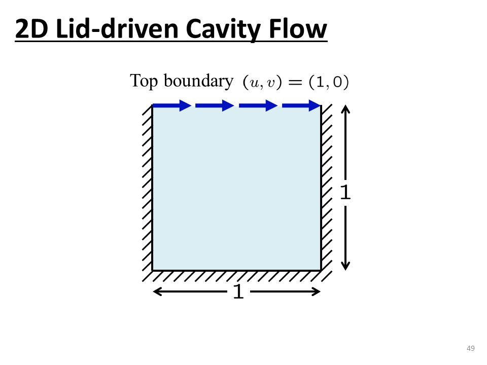 49 Top boundary 2D Lid-driven Cavity Flow