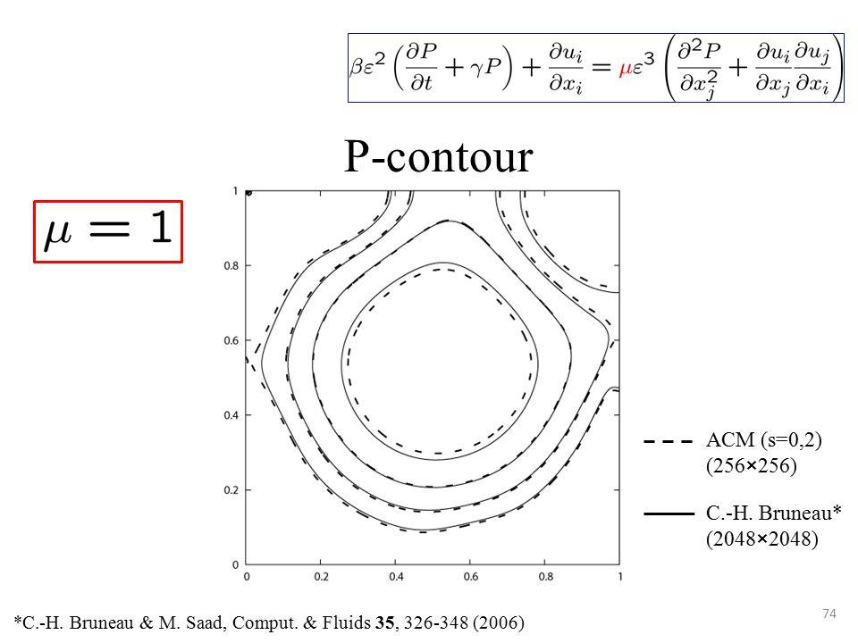 74 P-contour *C.-H. Bruneau & M. Saad, Comput.