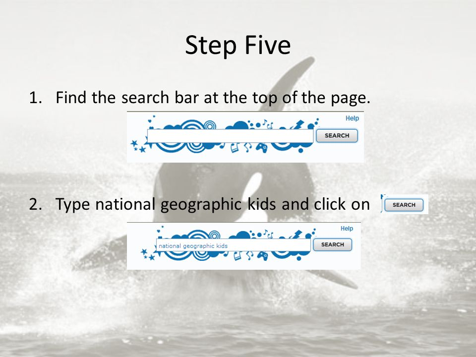 Step Five 1.Find the search bar at the top of the page. 2.Type national geographic kids and click on