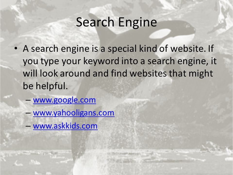 Search Engine A search engine is a special kind of website. If you type your keyword into a search engine, it will look around and find websites that