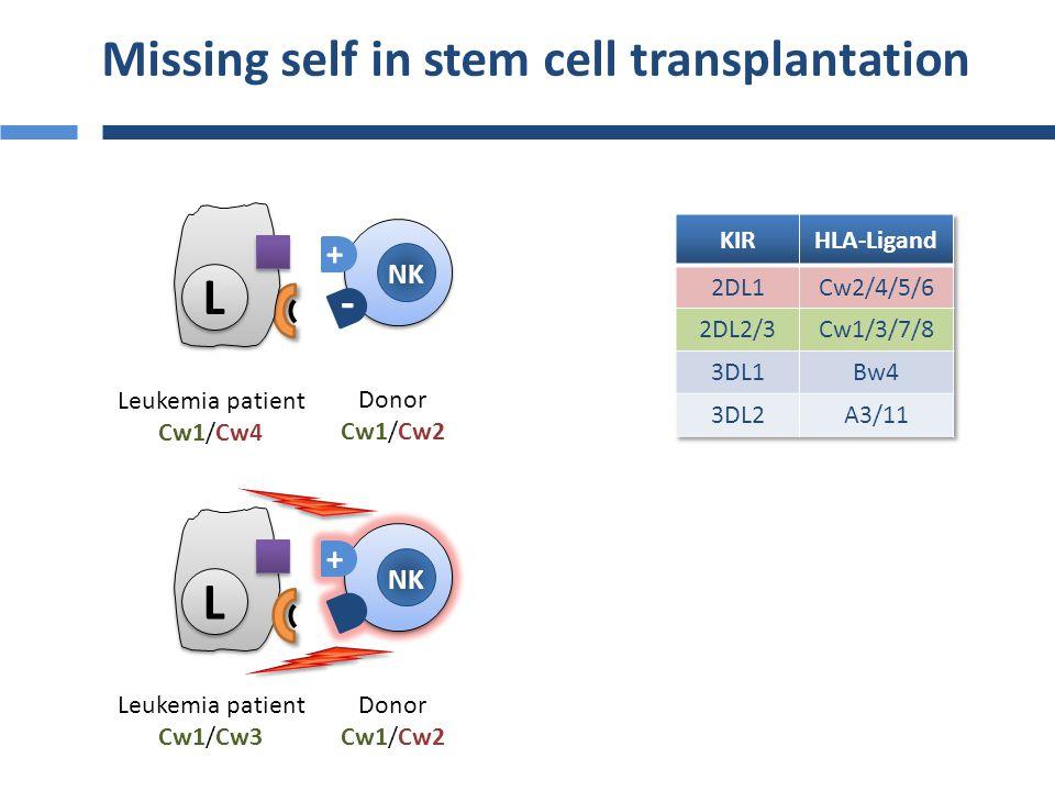 Stern, BMT, 2009 KIR mismatching in haploidentical HSCT