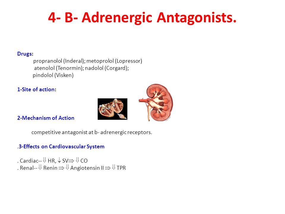 4- B- Adrenergic Antagonists.