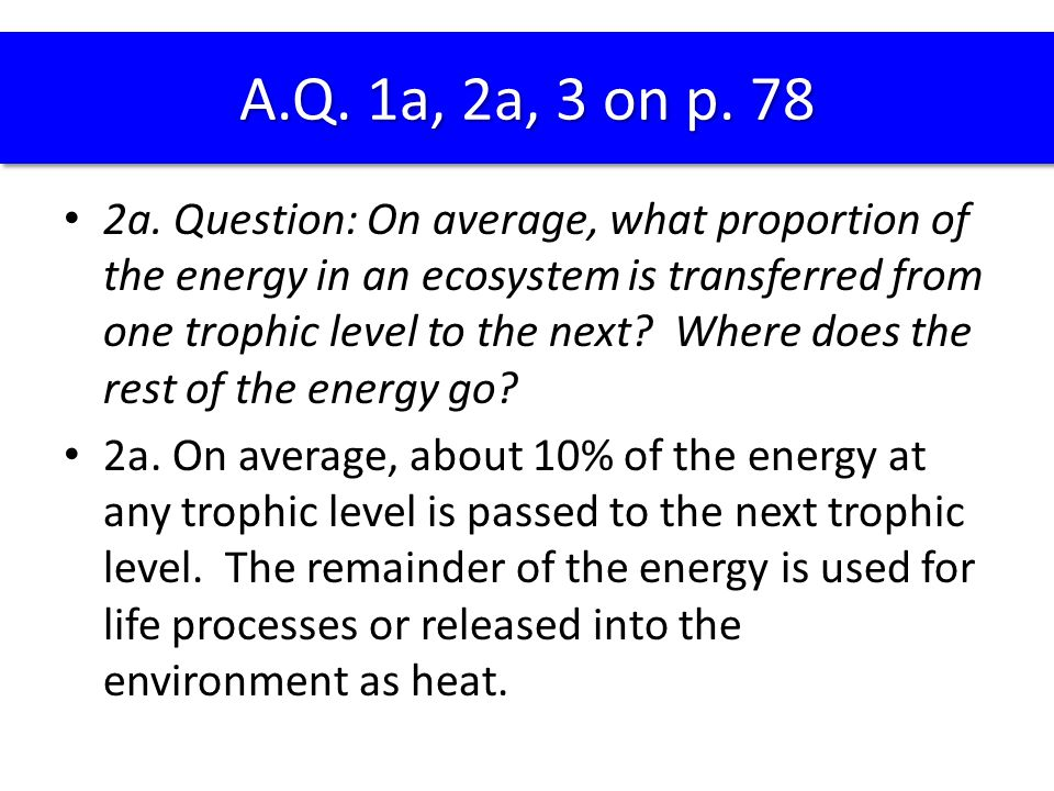 2a. Question: On average, what proportion of the energy in an ecosystem is transferred from one trophic level to the next? Where does the rest of the