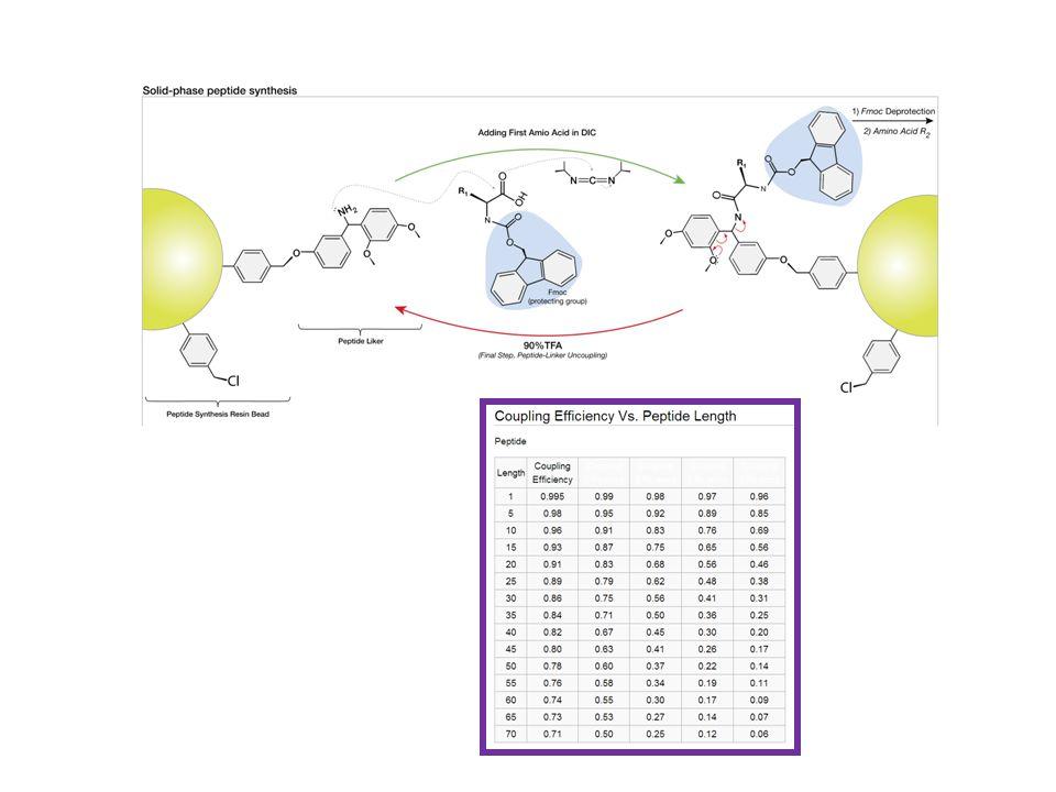 Fmoc (9-fluorenylmethyl carbamate) t-Boc (Di-tert-butyl dicarbonate).